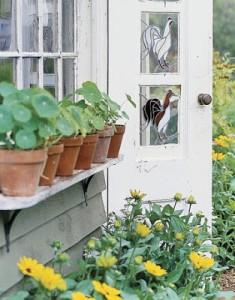 Exterior-potting-shed-door-HTOURS0705-de1