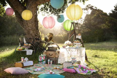 inspiration-summer-picnic-detailing-chinese-lantern-decor-outdoor-romantic-getaway-party-park-elegant